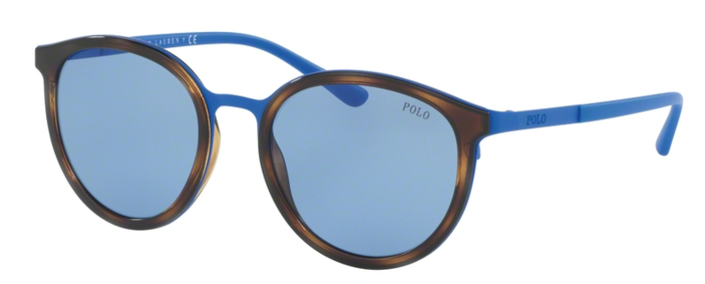 b5b08710088 Polo Ralph Lauren PH3104 9318 72 - SPX Opticians Ltd